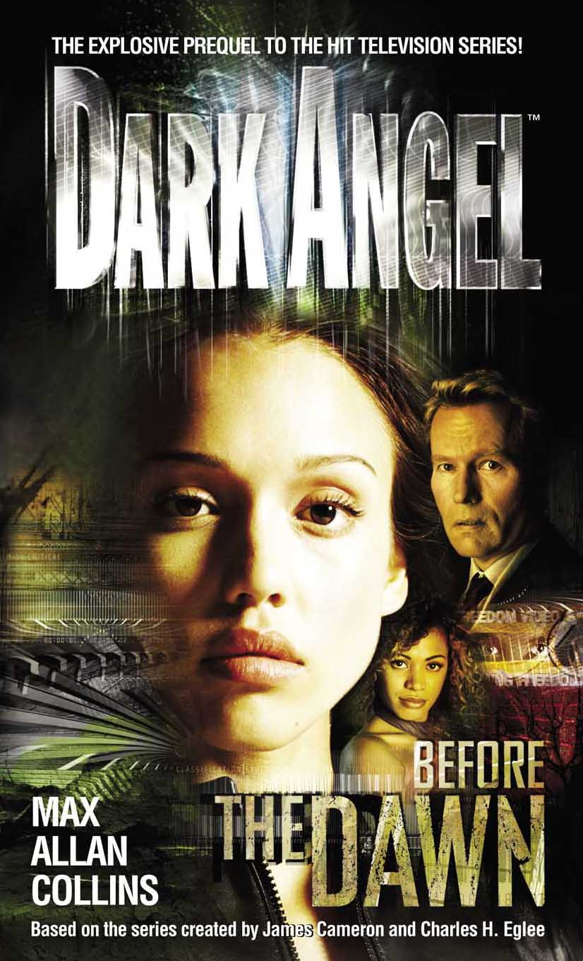 Resultado de imagen de dark angel before the dawn
